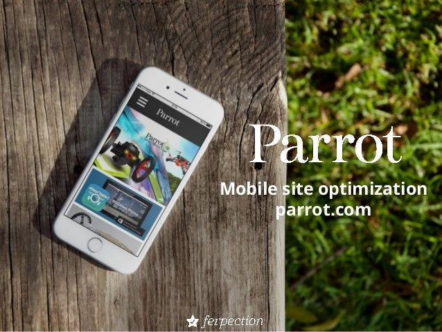 Mobile site optimization parrot.com