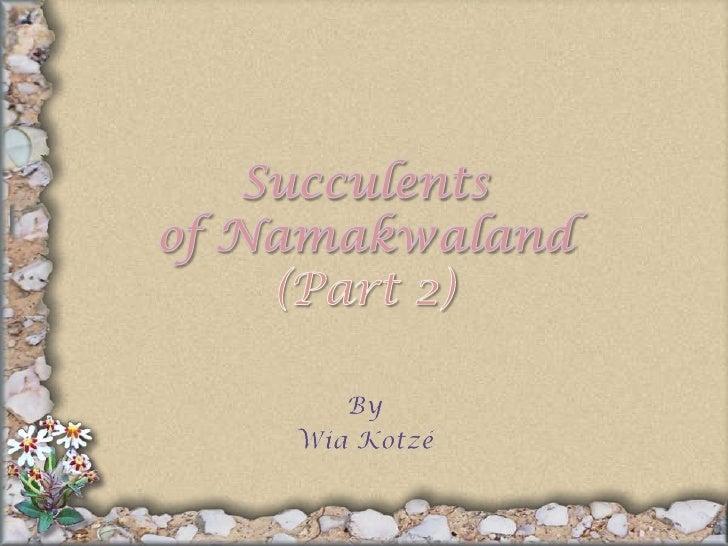 Succulentsof Namakwaland(Part 2)<br />By<br />Wia Kotzé<br />
