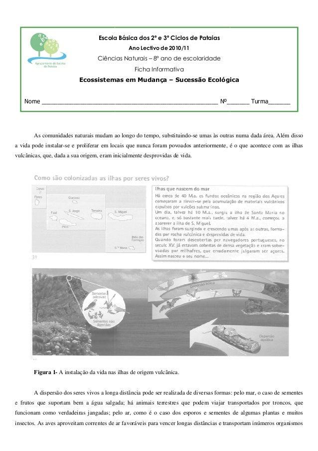 Escola Básica dos 2º e 3º Ciclos de Pataias Ano Lectivo de 2010/11  Ciências Naturais – 8º ano de escolaridade Ficha Infor...