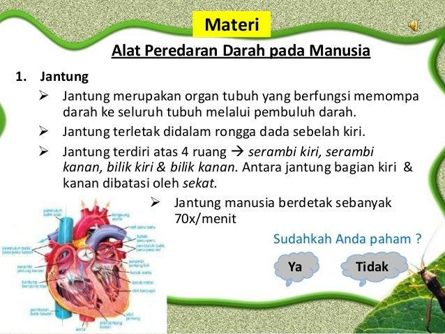 Materi               Alat Peredaran Darah pada Manusia1. Jantung    Jantung merupakan organ tubuh yang berfungsi memompa ...