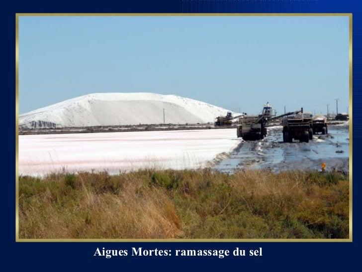 Aigues Mortes: ramassage du sel