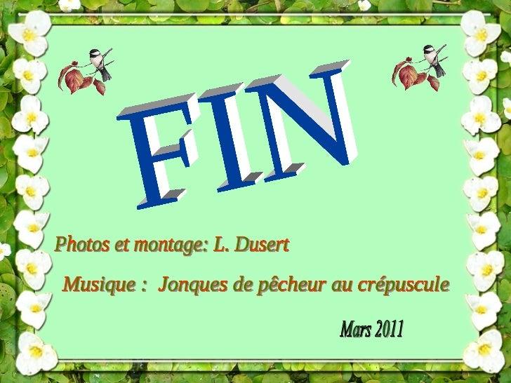 FIN Photos et montage: L. Dusert Musique :  Jonques de pêcheur au crépuscule Mars 2011