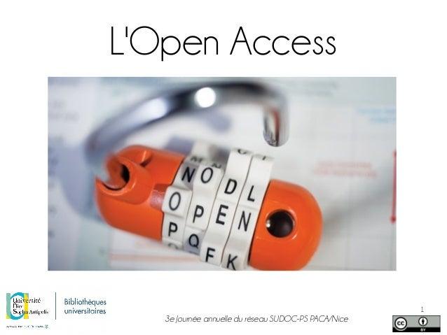 3e Journée annuelle du réseau SUDOC-PS PACA/Nice 1 L'Open Access