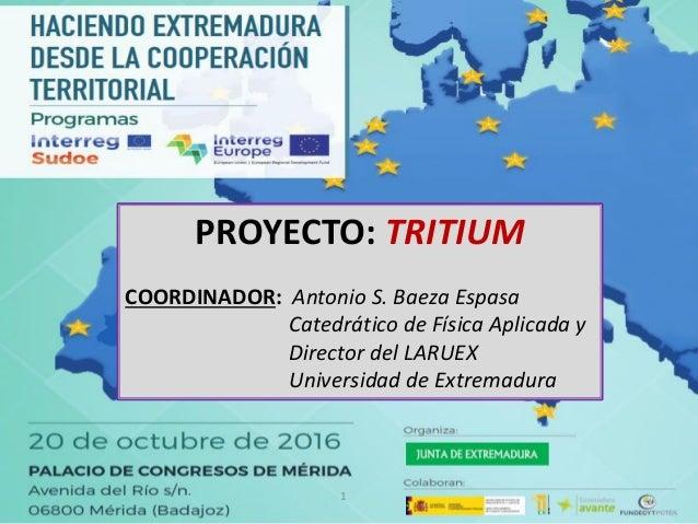 1 PROYECTO: TRITIUM COORDINADOR: Antonio S. Baeza Espasa Catedrático de Física Aplicada y Director del LARUEX Universidad ...