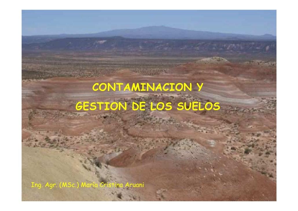 CONTAMINACION Y               GESTION DE LOS SUELOS     Ing. Agr. (MSc.) María Cristina Aruani