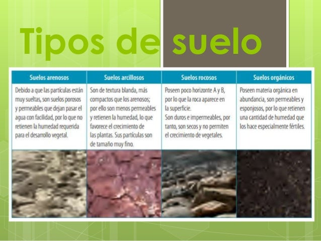 Suelo - Tipos de suelos ...