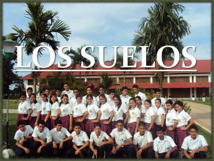 LOS SUELOS<br />