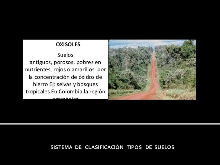 OXISOLES<br />Suelos antiguos, porosos, pobres en nutrientes, rojos o amarillos  por la concentración de óxidos de hie...