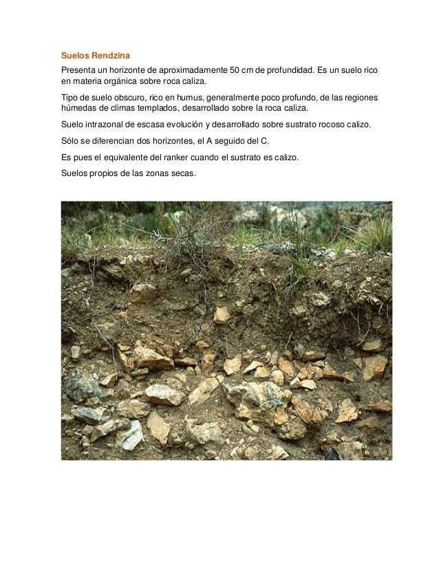 Suelos for Perfil del suelo wikipedia