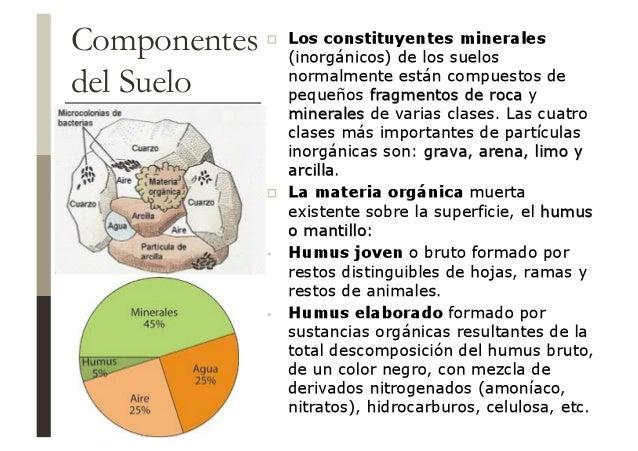 Suelos for Componentes quimicos del suelo