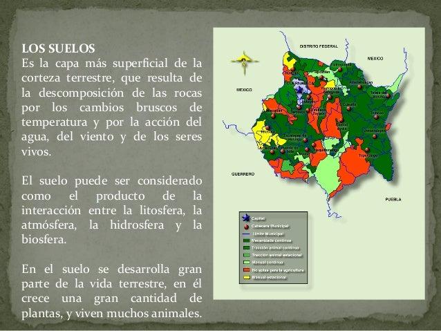 LOS SUELOS Es la capa más superficial de la corteza terrestre, que resulta de la descomposición de las rocas por los cambi...