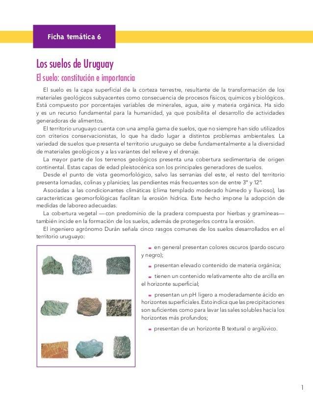 1  Los suelos de Uruguay  El suelo: constitución e importancia  El suelo es la capa superficial de la corteza terrestre, r...