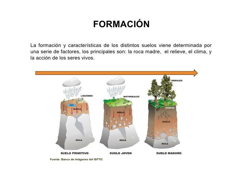 Suelos ies juan de lanuza sara for Formacion de la roca