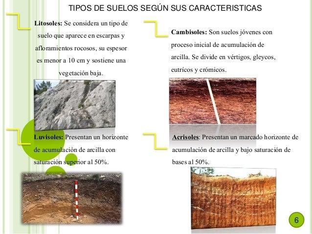 Suelos paisajismo - Tipos de suelos ...