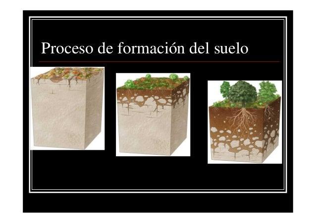 Suelos tema 1 for Proceso de formacion del suelo