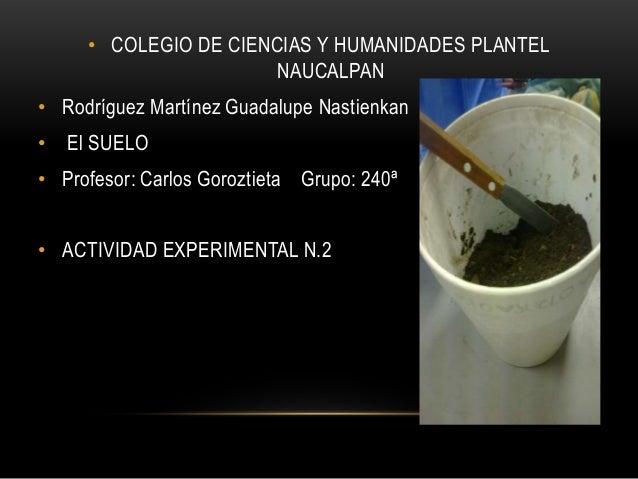 • COLEGIO DE CIENCIAS Y HUMANIDADES PLANTEL NAUCALPAN  • Rodríguez Martínez Guadalupe Nastienkan •  El SUELO  • Profesor: ...