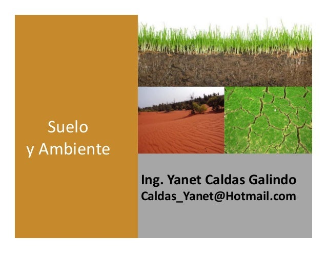 Ing. Yanet Caldas Galindo CIP: 115456 Caldas_Yanet@Hotmail.com Suelo y Ambiente