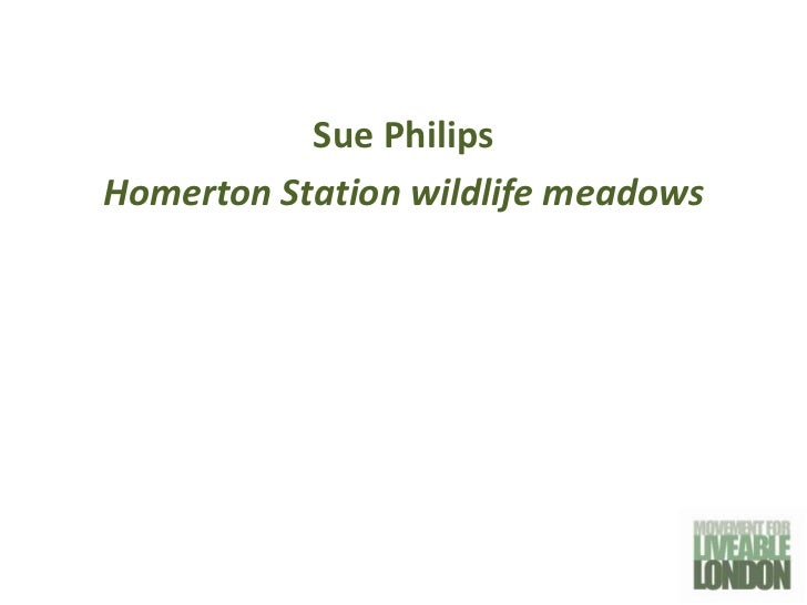 Sue PhilipsHomerton Station wildlife meadows