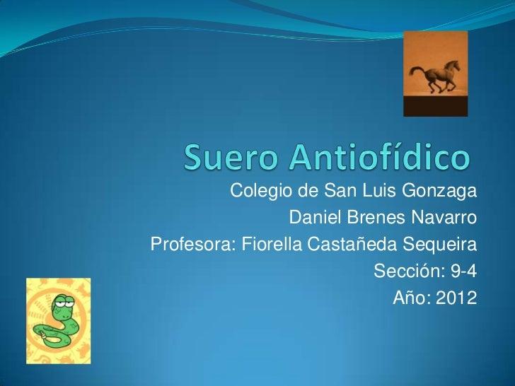 Colegio de San Luis Gonzaga                 Daniel Brenes NavarroProfesora: Fiorella Castañeda Sequeira                   ...
