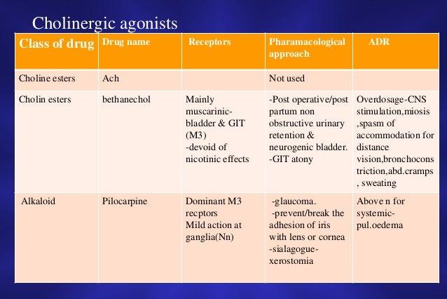 What is Myasthenia Gravis (MG)?