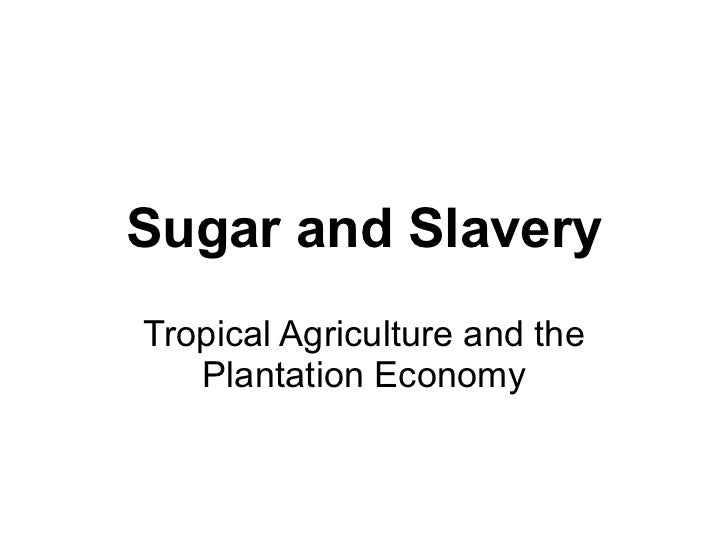 Sugar and Slavery Tropical Agriculture and the Plantation Economy