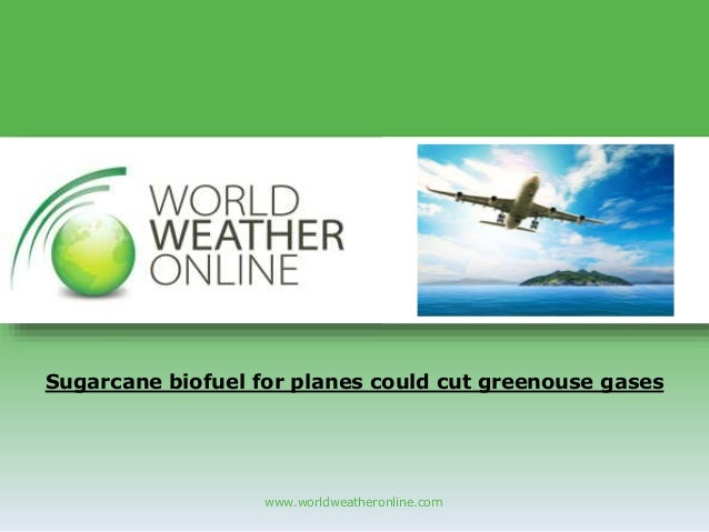 www.worldweatheronline.com Sugarcane biofuel for planes could cut greenouse gases