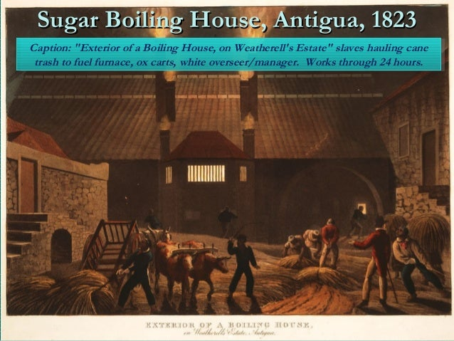 sugar trade By 1750 sugar surpassed grain as the most valuable commodity in european trade — it made up a fifth of all european imports and in the last decades of the century four-fifths of the sugar came from the british and french colonies in the west indies the sugar market went through a series of booms the heightened demand and production of sugar came about to a large extent due to a great change in the eating habits of many europeans.