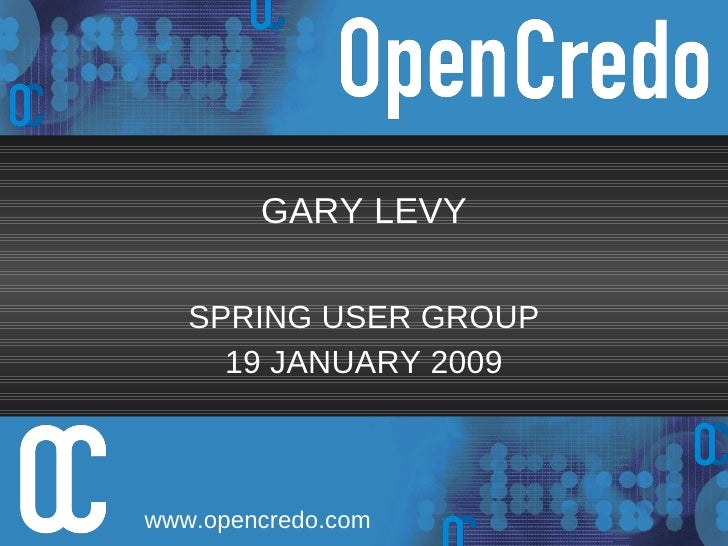GARY LEVY SPRING USER GROUP 19 JANUARY 2009