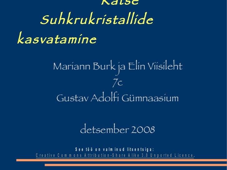 Katse   Suhkrukristallide kasvatamine <ul><ul><li>Mariann Burk ja Elin Viisileht </li></ul></ul><ul><ul><li>7c </li></ul><...