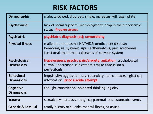 Youth Violence: Risk and Protective Factors