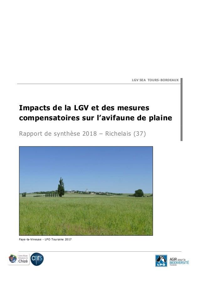 LGV SEA TOURS-BORDEAUX Impacts de la LGV et des mesures compensatoires sur l'avifaune de plaine Rapport de synthèse 2018 –...