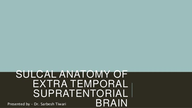 SULCAL ANATOMY OF EXTRA TEMPORAL SUPRATENTORIAL BRAINPresented by – Dr. Sarbesh Tiwari