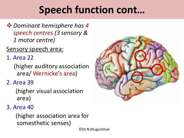 Sulci,Gyri & Functional areas of cerebrum Dr.N.Mugunthan.M.S