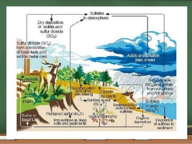 elements of environmental engineering by duggal pdf