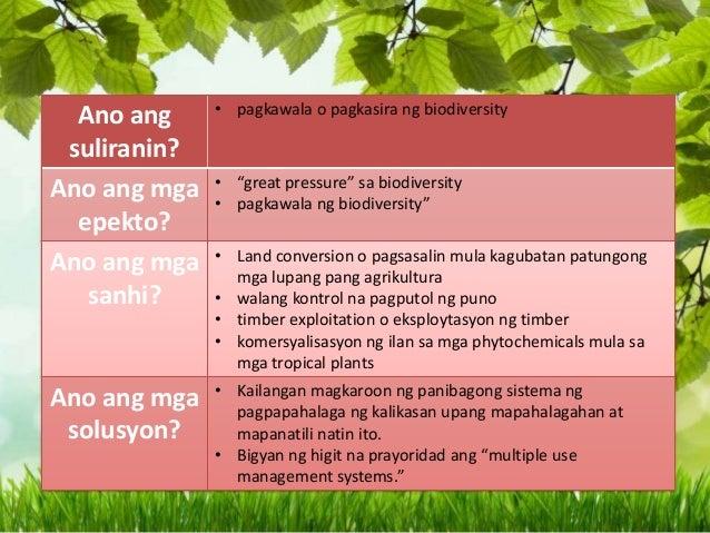 Ano ang yamang Gubat at ang mga Suliranin?
