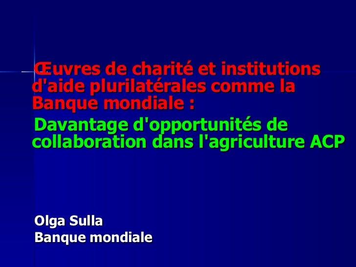 <ul><li>Œuvres de charité et institutions d'aide plurilatérales comme la Banque mondiale:  </li></ul><ul><li>Davantage d'...