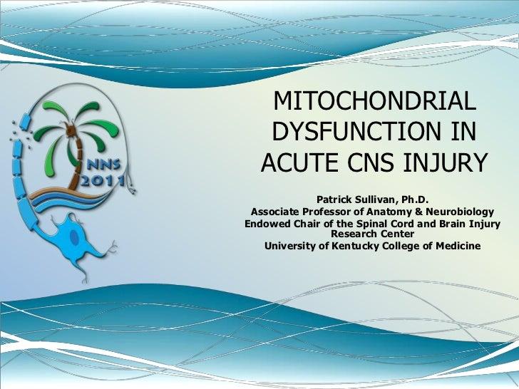 MITOCHONDRIAL DYSFUNCTION IN ACUTE CNS INJURY <br />Patrick Sullivan, Ph.D.<br />Associate Professor of Anatomy & Neurobio...