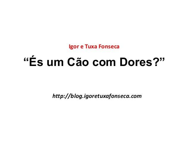 """""""És um Cão com Dores?"""" Igor e Tuxa Fonseca http://blog.igoretuxafonseca.com"""