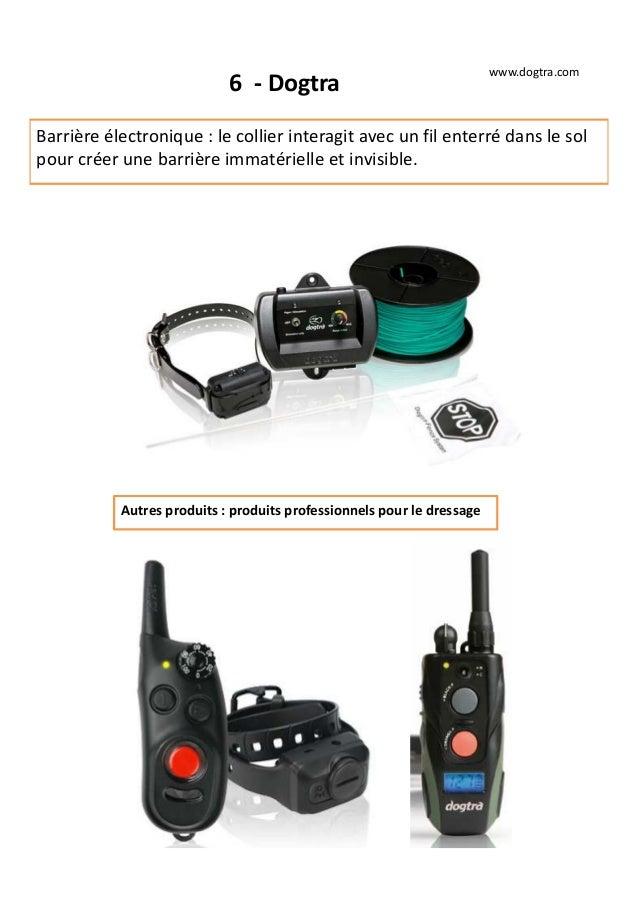 6 - Dogtra Barrière électronique : le collier interagit avec un fil enterré dans le sol pour créer une barrière immatériel...