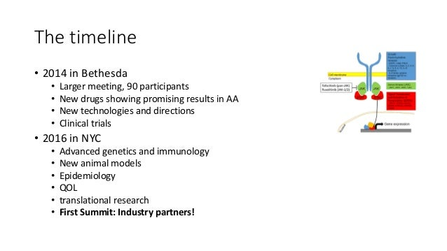 Basic Science Clinical Trials Patient Focused Pharmaceutical