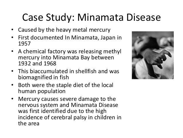 Write case study on Minamata disease?