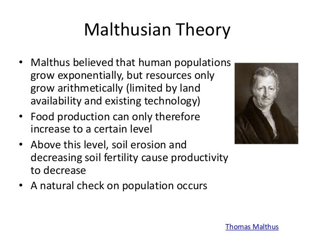 malthus theory of population summary