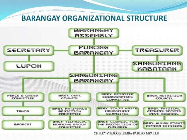 a local government unit study barangay Design and implementation this case study tells how  municipal staff and not sc who made sure the barangay local government unit understood the project and sup.