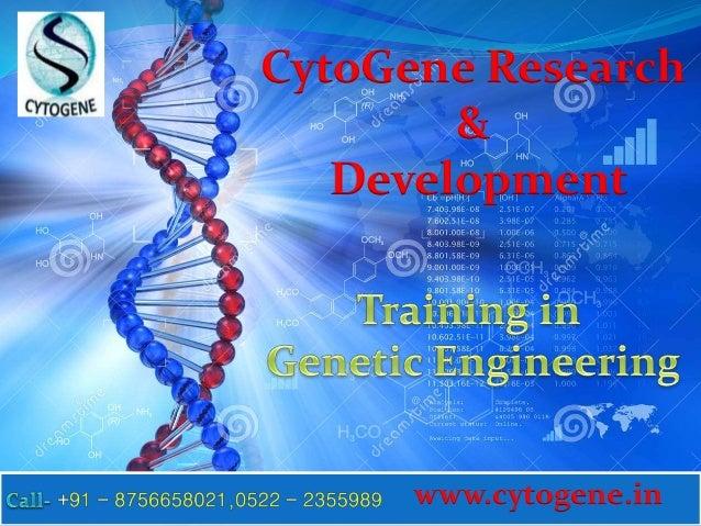 A study on bioethics and genetics engineering