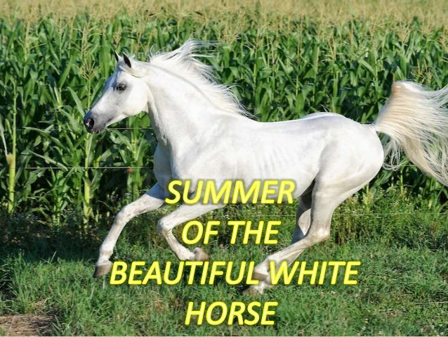 Summer Of The Butiful White Horse Classs11