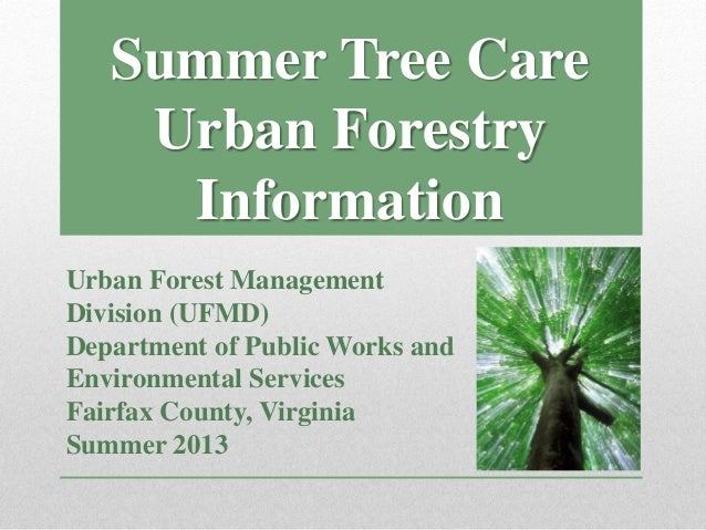 Urban Forestry Information Urban Forest Management Division (UFMD) Department of Public Works and Environmental Services F...