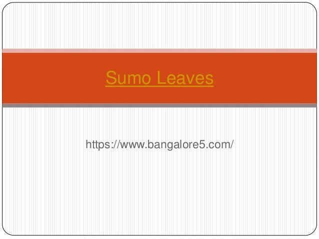 https://www.bangalore5.com/ Sumo Leaves