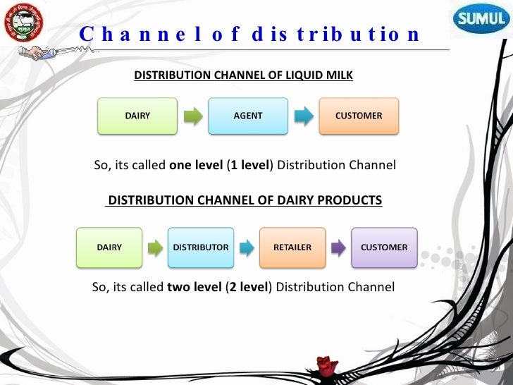 distribution channels for dairy products This was mainly due to the low appearance of dairy products in japanese cuisine  table 43 distribution of other dairy by format: % value 2012-2017.