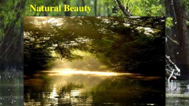 Presentation on Sundarban, Bangladesh