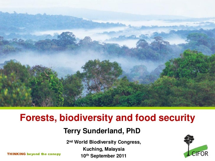 Forests, biodiversity and food security                             Terry Sunderland, PhD                             2nd ...